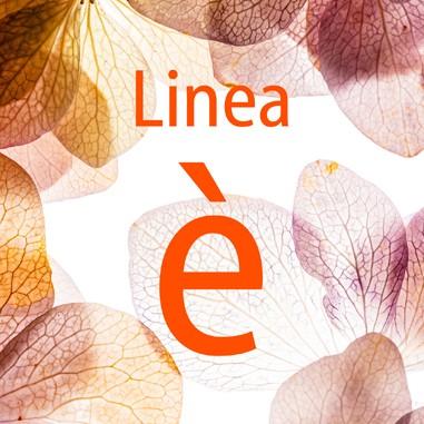 Linea è
